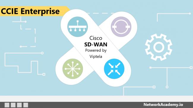 Cisco Sd Wan Deep Dive Networkacademy Io